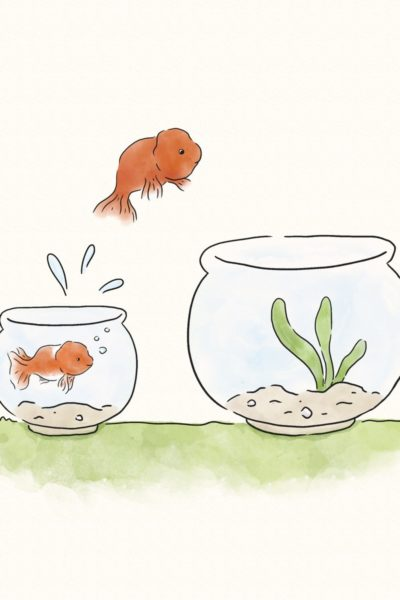 A Story About a Fish